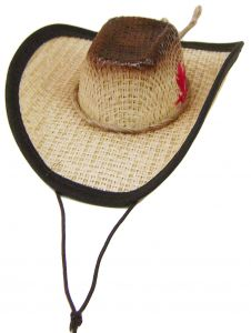 Modestone Straw Dog Cat Pet Hat Elastic String Feather Brown