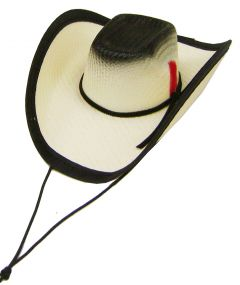 Modestone Straw Dog Cat Pet Hat Elastic String Feather Black